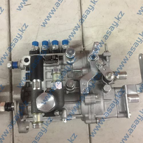 Топливная аппаратура BQ2000-BH4Q80R9 (C490BPG)